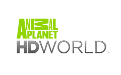 Animal Planet world